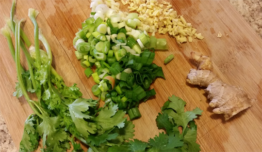 Green Onion, Cilantro, Ginger